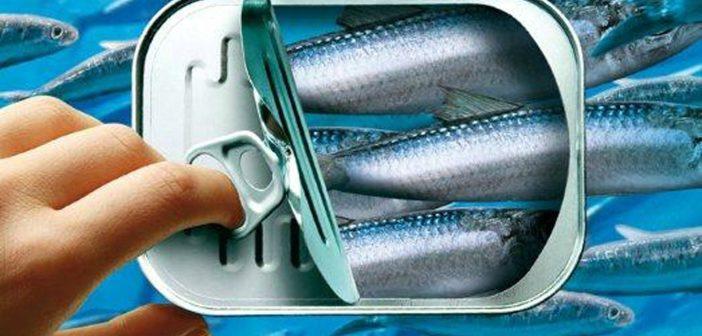Conserve de poisson