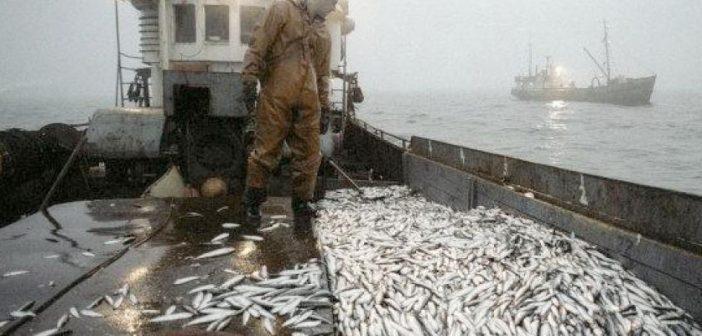 Accord de pêche Sénégal-UE