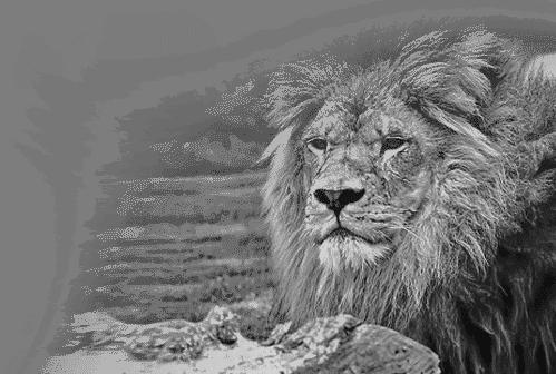 Atlas Mara