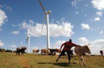 énergies renouvelables en afrique