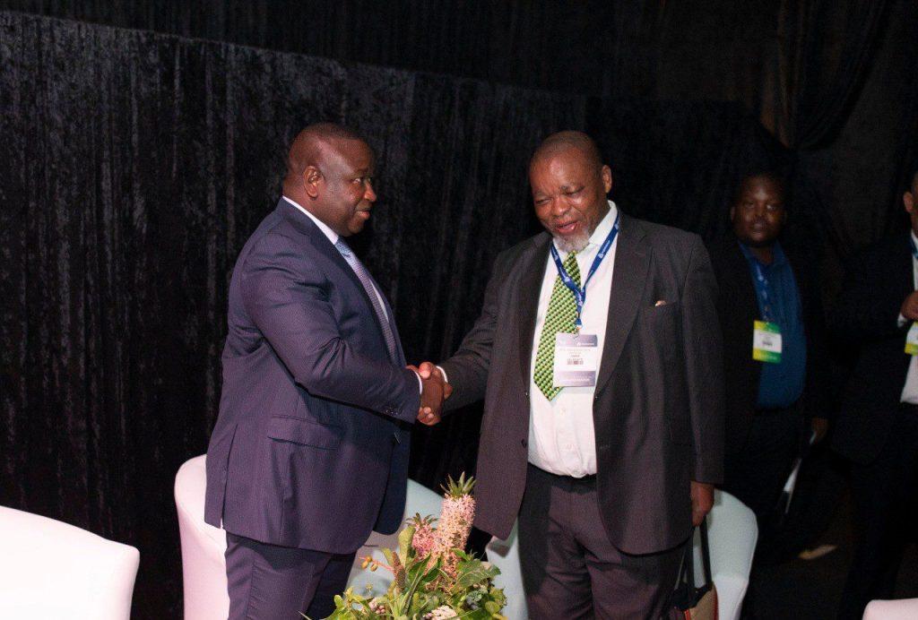 de gauche à droite le président de la Sierra Leone Julius Maada-Bio et le ministre sud-africain de l'Energie et des ressources minières Gwede Mantashe.