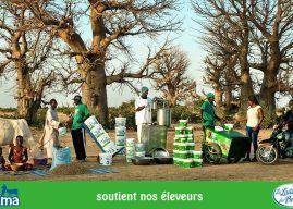 Afribusiness : Le gestionnaire d'actifs Amundi renouvelle sa confiance à La Laiterie du Berger du Sénégal