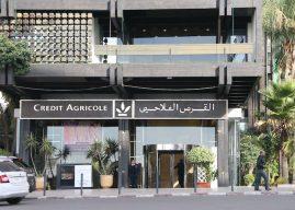 Financement : Le Crédit agricole du Maroc met les bouchées doubles pour la campagne 2020-2021