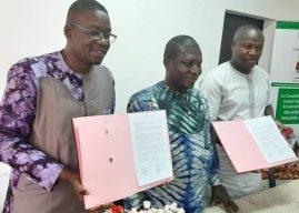 Burkina Faso : La filière anacarde renforce ses capacités productives