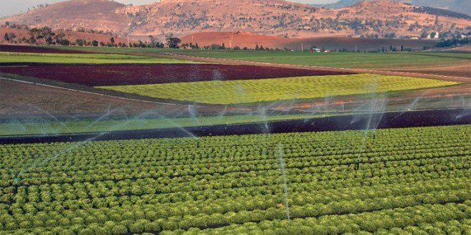 agriculture, Maroc, financement, banque mondiale