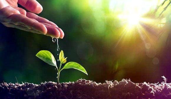 Rapport de la CEA sur l'économie verte