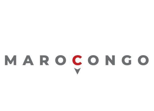 Business : La marocaine RedPiLL et la congolaise Biogreen Sparine Sarl. lancent une plateforme d'échanges à destination des opérateurs