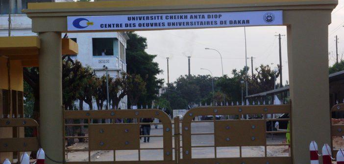 Transformation numérique : Le haut débit dans les universités africaines coûtera 52 milliards de dollars